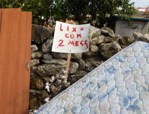 Acumulação de lixo no Concelho de Sintra