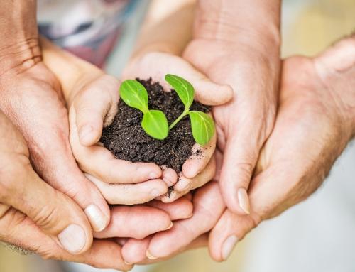 Dia Mundial do Ambiente