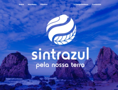 Faça praia em Sintra. Sem plásticos.