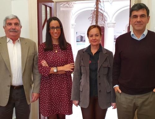 Síntese da 47.ª Reunião Ordinária e Privada da Câmara Municipal de Sintra