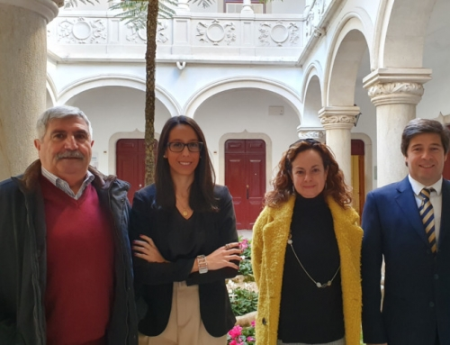 Síntese da 49.ª Reunião Ordinária e Privada da Câmara Municipal de Sintra