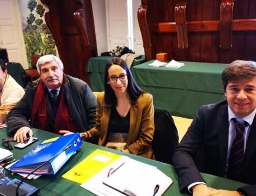 Síntese da 52ª Reunião Ordinária e Pública da Câmara Municipal de Sintra