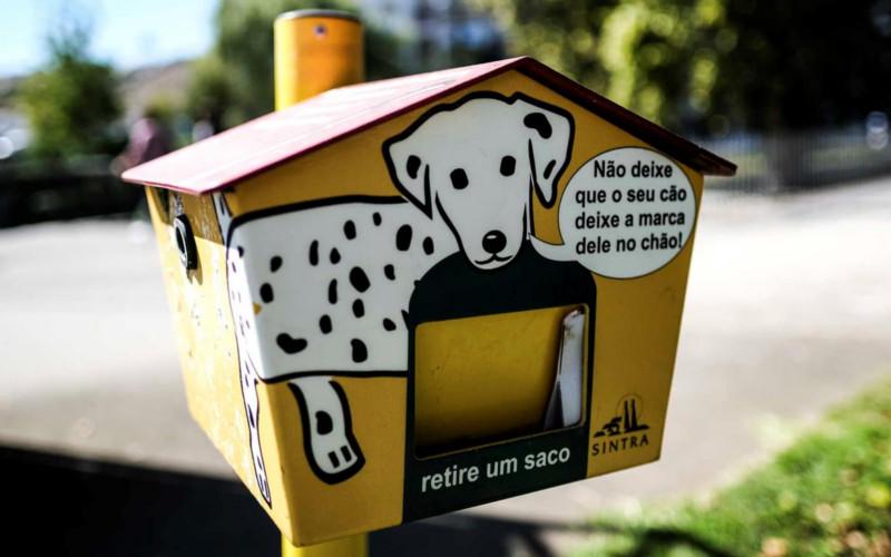 Dejetos caninos no espaço público