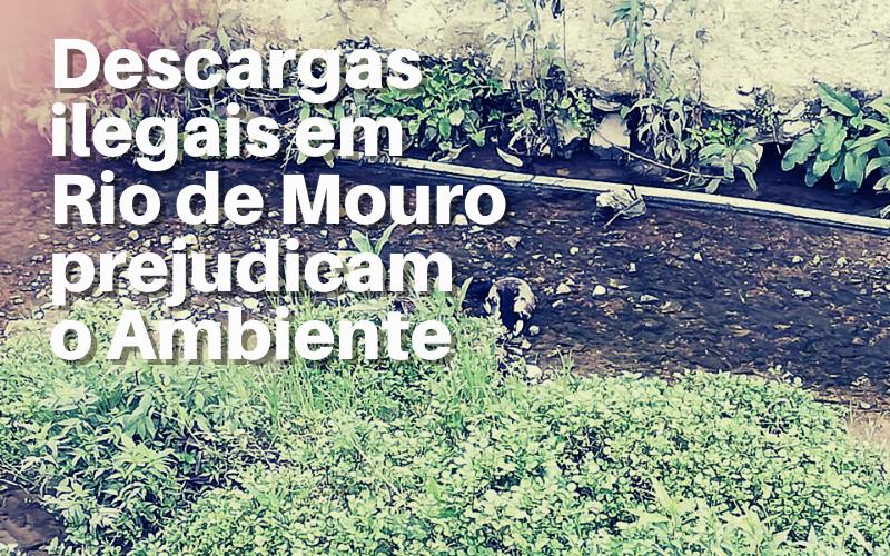 Descargas ilegais em Rio de Mouro prejudicam o Ambiente